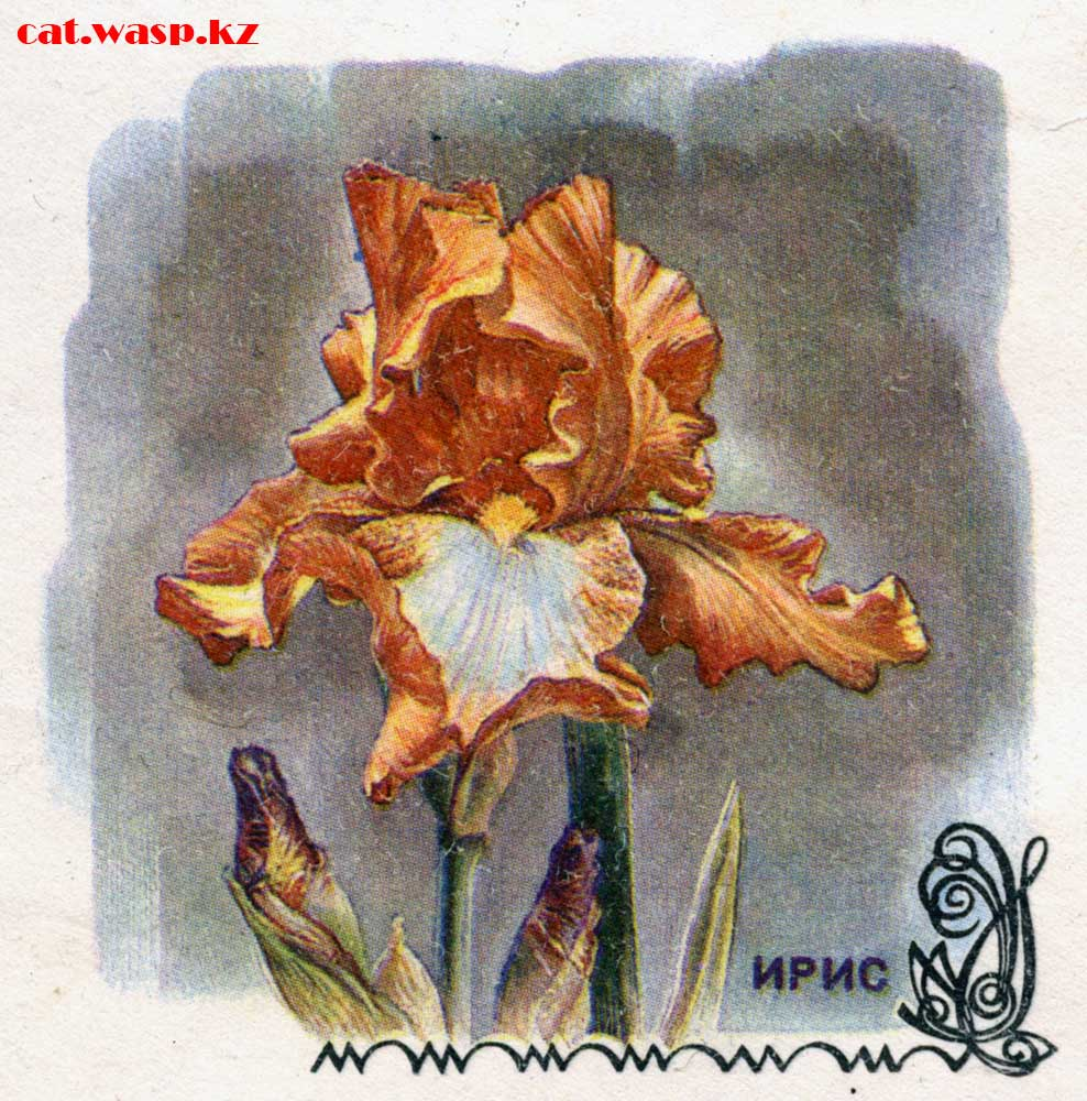 рисунки на почтовых конвертах Советского Союза, галерея