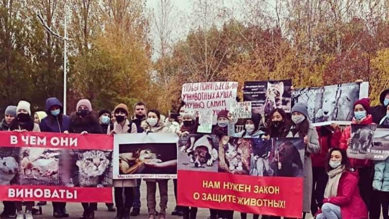 Защита животных в Казахстане - митинг в Нур-Султане