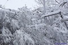Алматы - 16 февраля 2020 года, самый сильный снегопад...