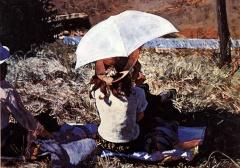 Современная живопись - 1983 год, автор (мне) неизвестен