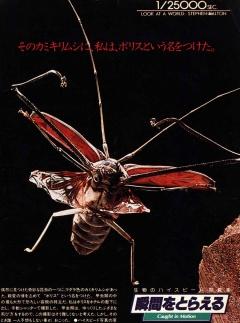 Caught in Motion - макросъемка насекомых